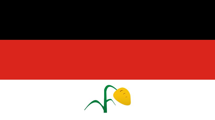 KODUSU FLAG.jpg